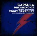 Dreaming of Ziggy Stardust -  LP